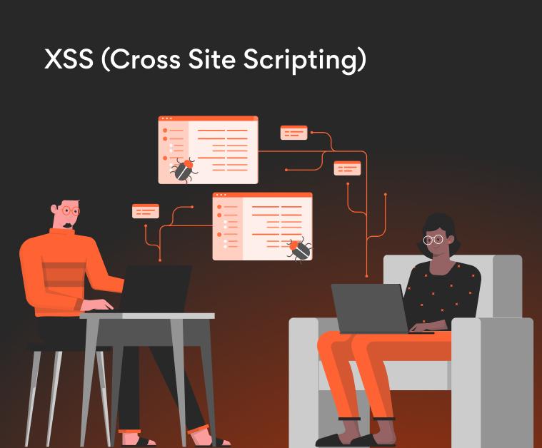 Vulnerabilidad XSS (Cross Site Scripting): Qué es y cómo solucionarla